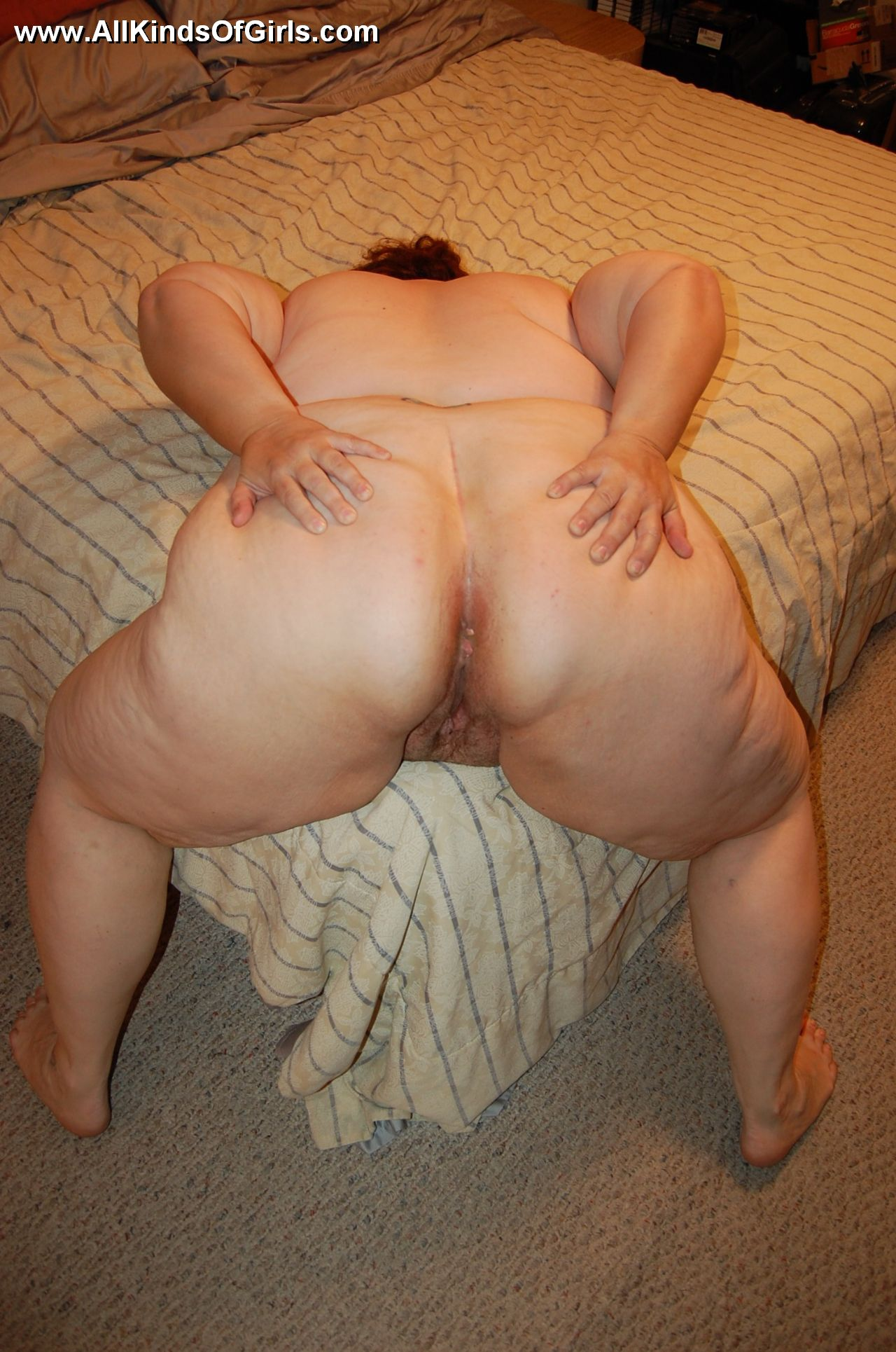 Ashley massaro boob size
