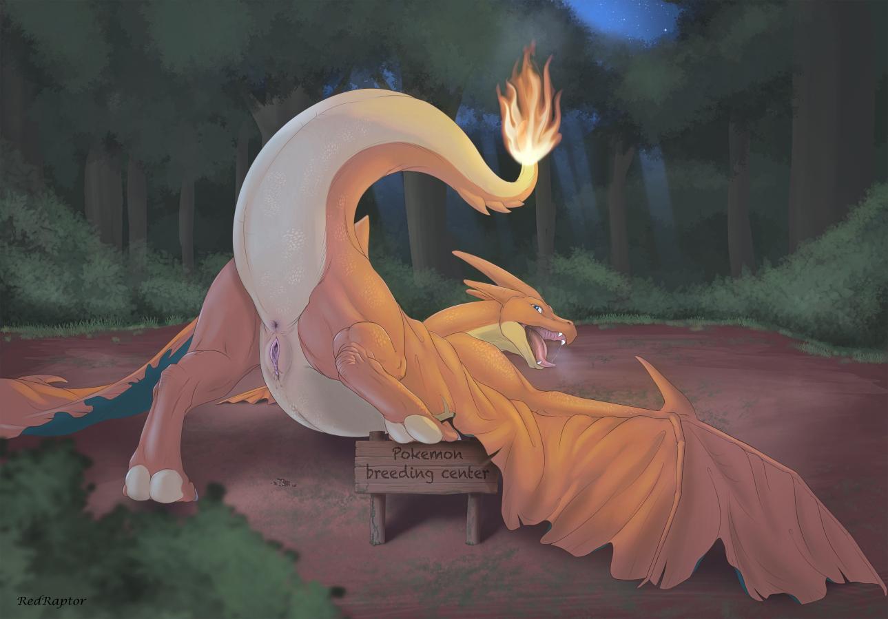 Pokemon futa flash game