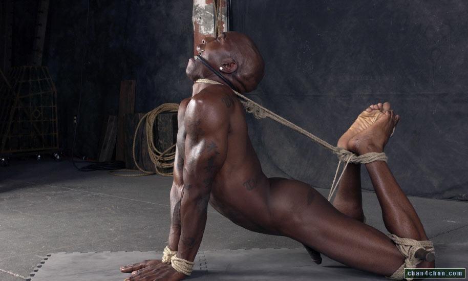 Bhavana nude fakes