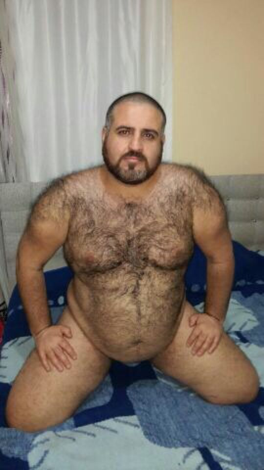 Arab tumblr chubby daddy Gay