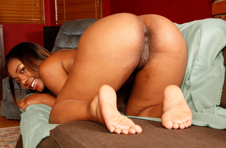 curvy anal porn