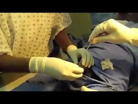 Amateur interracial anal porn