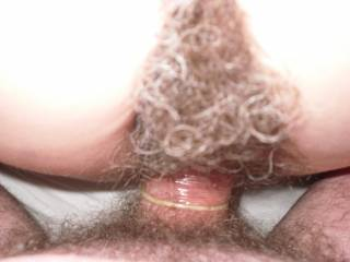 HAIRY MEN PENIS NUDE