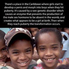 Ghetto black teen girls